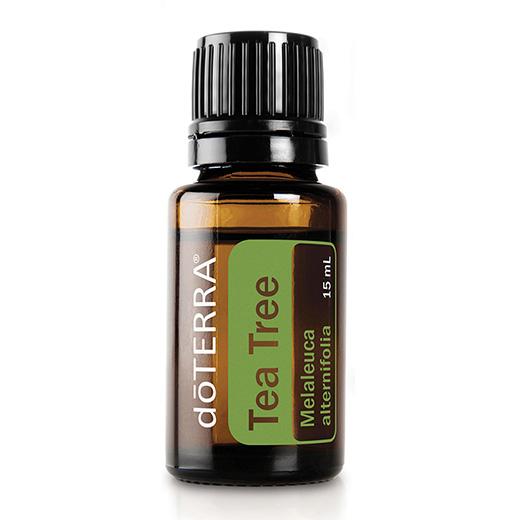 doTERRA Tea Tree Melaleuca Essential Oil Photo